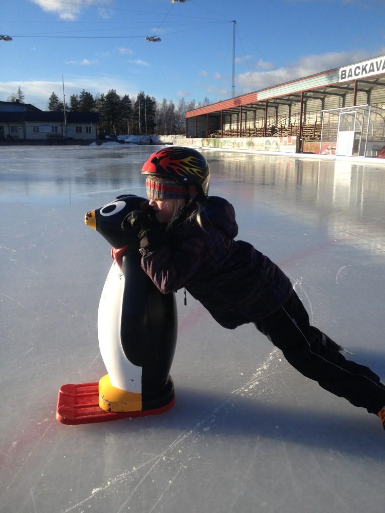 backavallen med pingviner och skridskor, sportlov 2014 009