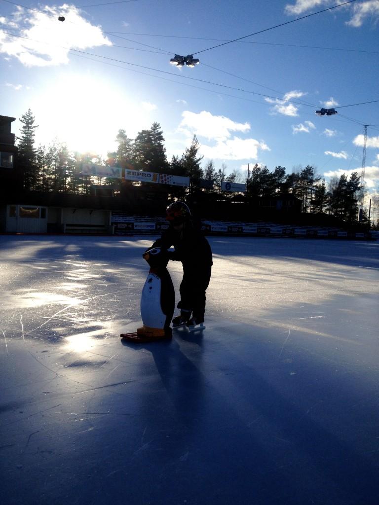 backavallen med pingviner och skridskor, sportlov 2014 012